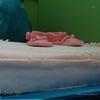 торт Нежность от моей вдохновительницы Оксанки