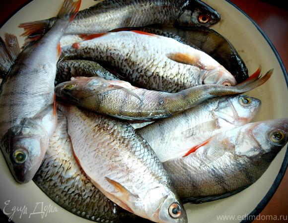 Ершистое закрытие ЗИМНЕЙ рыбалки для Виктории S