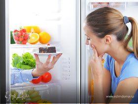 Холодильник – друг человека