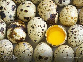 Перепелиные яйца в кулинарии