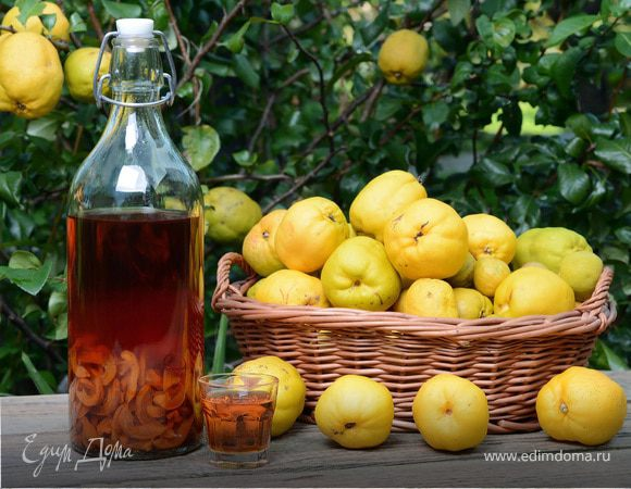 Как приготовит вино из яблоки в домашних условиях 91
