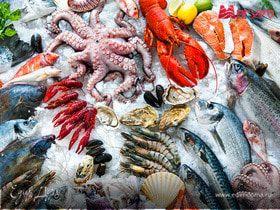 Тест: Узнай морепродукт по фото!