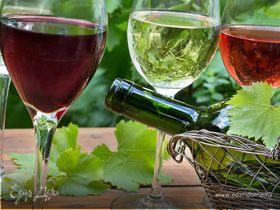 Сделано с душой: любимые вина Молдавии