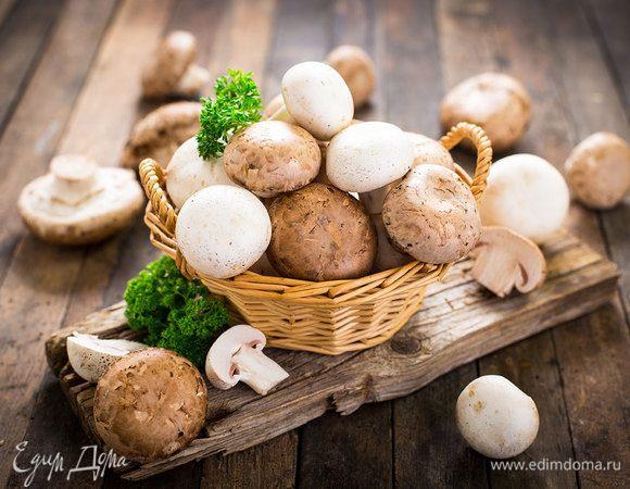 Инфографика: что приготовить из разных видов грибов