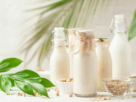 Напиток здоровья: готовим растительное молоко в домашних условиях
