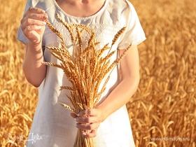 Удивительная пшеница: обзор круп