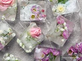 Что можно заморозить в формочках для льда