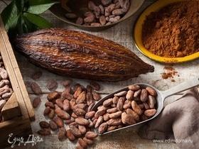 Исследование выявило новую пользу какао