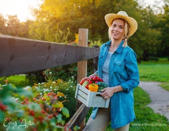 Тест-игра: сможете ли вы выжить на ферме?