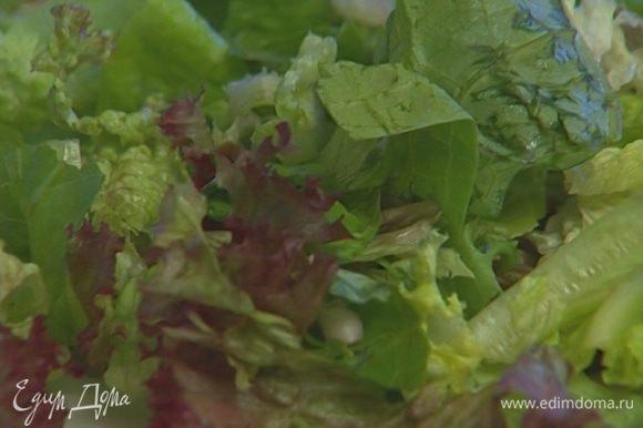 Листья салата вымыть, просушить, крупно нарезать и выложить на большое блюдо.