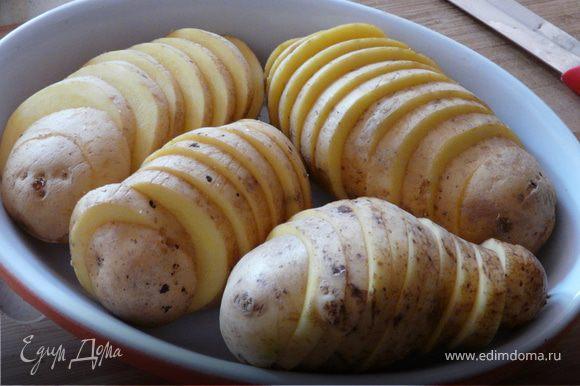 Порезать картошку кружками (средней толщины). В глубокую сковороду сложить картошку, влить молоко, соль, перец и тушить до полуготовности