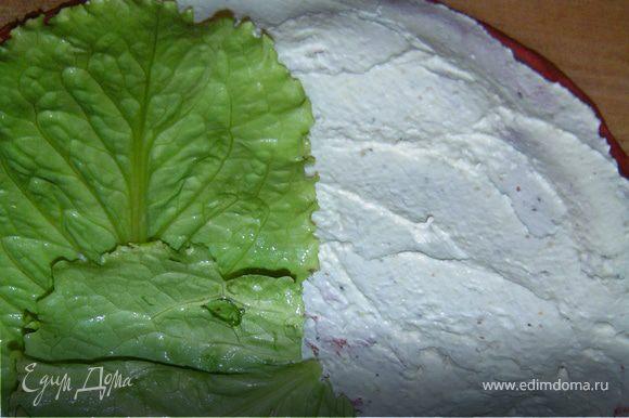 На один край кладем листья салата, их смазываем намазкой,