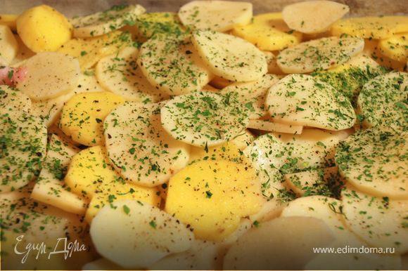 Поставить курицу мариноваться на 2-3 часа в холодильник (можно оставить на ночь). Картофель очистить и порезать кружочками. На противень налить немного растительного масла и выложить картофель, посолить, поперчить (можно посыпать приправой и рубленой зеленью), сверху картофель полить небольшим количеством растительного масла. На середину противня выложить маринованную курицу.