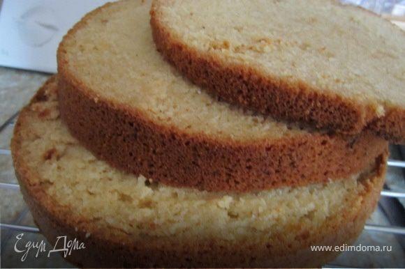 Готовим бисквит по-рецепту http://www.edimdoma.ru/recipes/20941 Разрезаем его на 2- 3 коржа(как кому нравится)