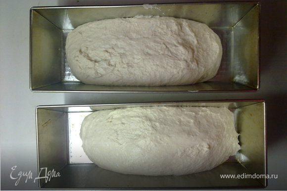 снова замесить тесто,смазав руки маслом и выложить в смазаные формы тесто и снова в теплое темное место на1 час
