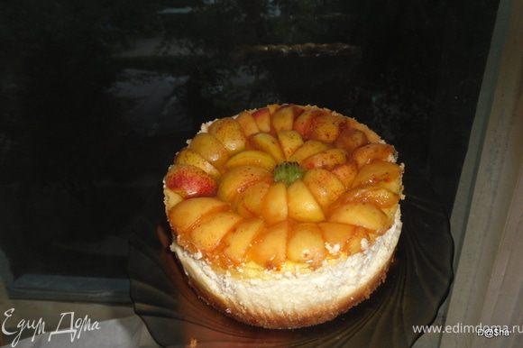Выложить кусочки абрикоса и покрыть желе. Приятного аппетита!!!