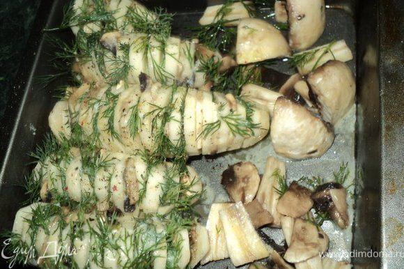 Посолить, поперчить и уложить картофель в форму для запекания ( я еще добавила в форму оставшиеся грибы ). Полить картофель растопленным сливочным маслом, накрыть фольгой и запекать в духовке 30 мин при температуре 200 градусов. Затем снять фольгу и продолжать запекать минут 15, до появления румяной корочки.