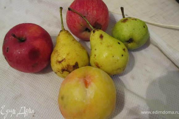 Яблоки, груши, персик порезать на крупные кусочки.