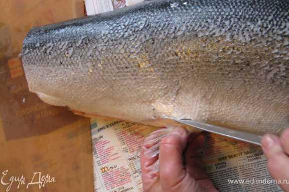 Дальше отрезаем ему хвост и нижние плавники - это пойдет на рыбный суп.