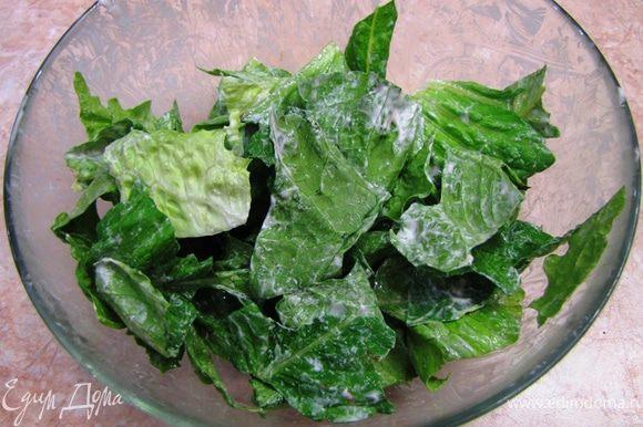 Порвите листья салата и заправьте его соусом Цезарь, перемешав его руками.