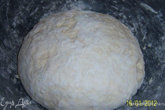 В муку засыпаем дрожжи, перемешиваем, добавляем соль и замешиваем тесто, затем накрываем чашку и кладём в холодильник на 40-50мин.