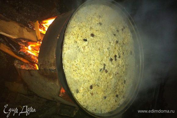 Добавьте дров в очаг и начинайте выпаривать жидкость, одновременно перемешивая слой риса.