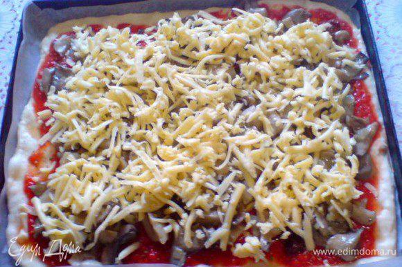 Я в этот раз добавляла вяленые помидоры,которые присыпала прованскими травами ,сверху положила вешенки, жареные с луком, и сыр.Отправить в хорошо разогретую духовку где-то на 15 минут.