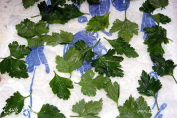 Листики петрушки помыть и слегка подсушить. Выбрать те листики, у которых прожилки потоньше, оторвать черенок.