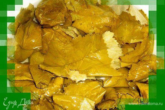 Листья залить холодной водой,дать постоять,что бы ушла лишняя соль,воду слить,листья промыть.