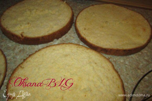 Бисквиты охладить, первый бисквит разрезать на 2 коржа, во втором, по желанию срезать немного верх и низ.