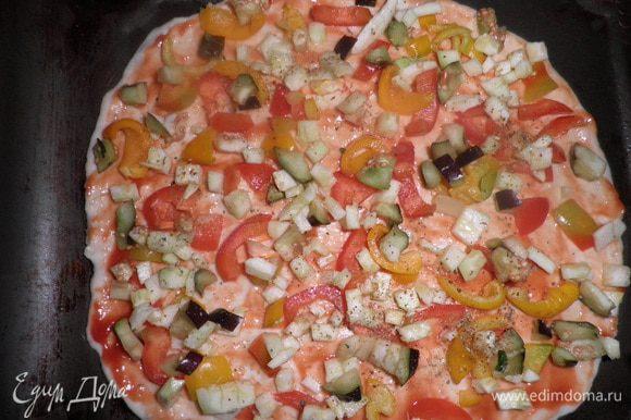 Для начинки баклажаны,кабачки,перец нарезаем очень мелко,помидоры кружочками.Колбасу,ветчину и курицу режем кубиками или соломкой. Раскатываем тесто смазываем кетчупом и посыпаем приправой для пиццы.Выкладываем овощи баклажан,кабачок,помидор,перец. Далее выкладываем колбасу,ветчину,курицу.Сверху посыпаем натертым на терке сыром и смазываем майонезом. Ставим в духовку.
