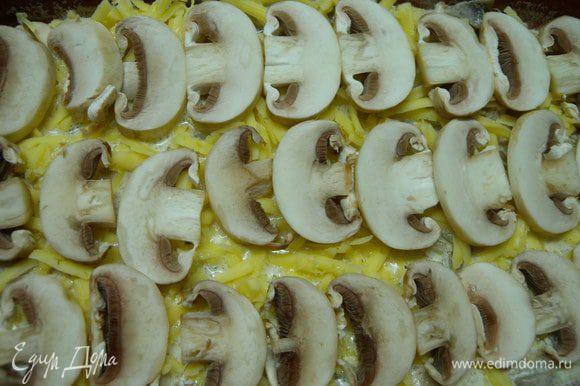 Покрыть красиво грибами.