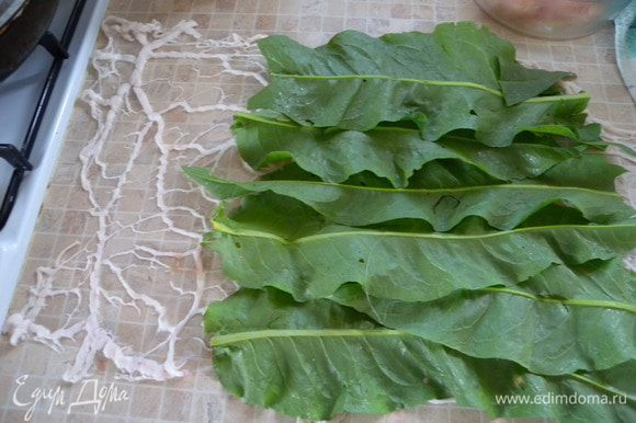 Укладываем листья на сетку