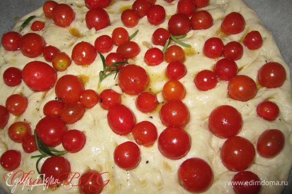 Выложить помидоры, вдавив их в тесто, сверху полить оливковым маслом из помидор.