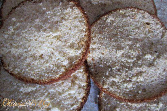 Бисквит охладить, каждый разрезать на 3 коржа.