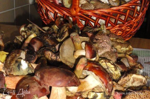 Перебираем, чистим, промываем, отвариваем грибы. Сливаем воду.