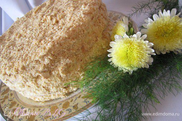После пропитки торт покрыть любым кремом и присыпать поломанным коржом.