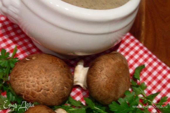 Подаем суп, присыпав зеленым луком или другой зеленью по вкусу. Очень вкусно с крутонами. Приятного аппетита))