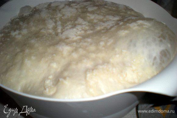 Кончиками пальцев втереть дрожжи в муку.Добавить соль и воду.Вымешиваем в миске в течении 2-3 минут,пока тесто не начнет собираться в ком.Затем на НЕ подпыленную поверхность выкладываем тесто и вымешиваем до тех пор,пока не начнет отлипать от стола и рук.Немного подпыляем поверхность и миску.Формируем из теста шар,отправляем в миску,накрываем льняным полотенцем и ставим в теплое место примерно на час,пока тесто не увеличится в два раза.
