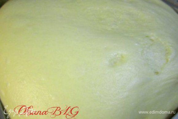 Вымесить тесто. Накрыть пленкой и отравить на 1,5-2 часа в теплом месте без сквозняков.