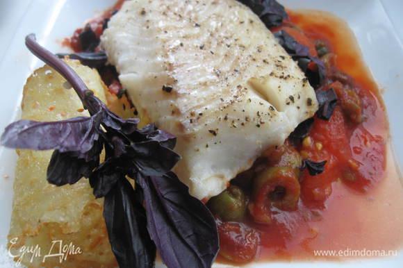 На базилик положить рыбу. Вокруг томатной подушки - соус с оливками. Сбоку для украшения положить сырный чипс и веточку базилика.