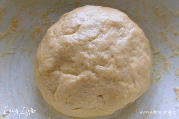 Замесить гладкое однородное тесто( мне понадобилось еще немного муки). Накрыть его кухонным полотенцем и оставить в теплом месте, чтобы оно увеличилось в 2 раза.