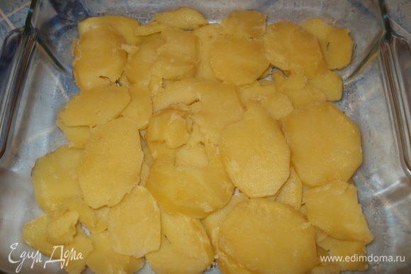 Отварной картофель нарезаем кружочками и выкладываем на дно формы, которую предварительно слегка смазываем растительным маслом.