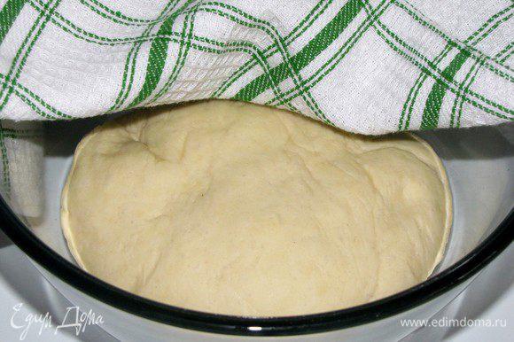 Положить тесто в смазанную маслом миску, накрыть пленкой и оставить в теплом месте на 1 час.