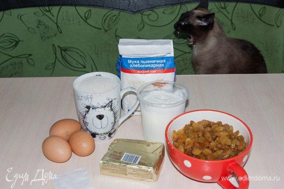 Подготовим все ингредиенты. Если у вас есть пушистый помощник (как у меня), то, во избежание попадания шерсти в кекс, его лучше попросить уйти с кухни :)