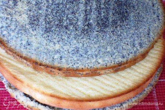 Выпекать 3 коржа в форме с пергаментом в разогретой до 180 °С духовке 15 минут каждый. Остудить на решетке.У нас получилось 2 маковых коржа и 1 белый.