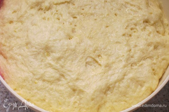 Накрыть пищевой плёнкой и оставить подходить в тёплое место (пока объем не увеличится вдвое).