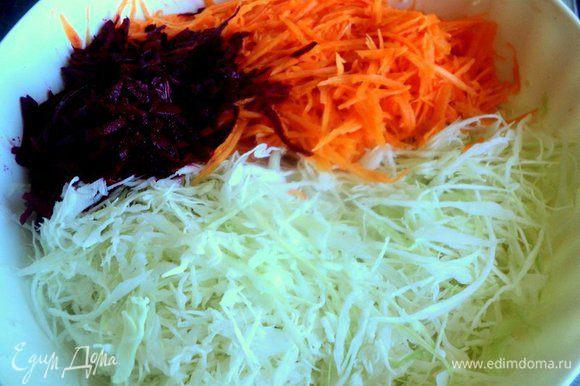 Капусту тонко нашинковать, тыкву натереть на терке для корейской морковки, свеклу на терке. Чеснок выдавить через чеснокодавку.