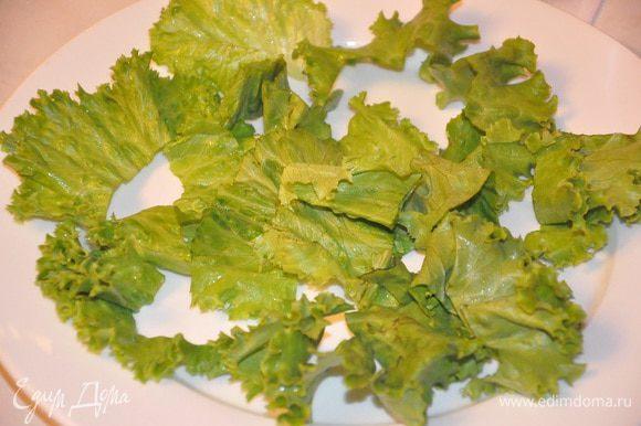 Листья салата промыть и разложить по тарелке.