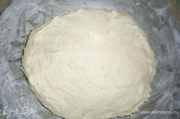 К протертому творогу добавляем растертые с сахаром (3 ст.л.) дрожжи, теплое молоко, неполную чайную ложку соли, ванилин и муку. Замешиваем мягкое тесто. Муку советую не всыпать всю сразу, ведь творог может быть разной влажности, тогда муки понадобится немного больше или меньше. Я всыпала 450 г муки, а затем добавила еще 1 столовую ложку. Тесто собираем в шар, кладем в миску, накрываем чистым полотенцем и оставляем на расстойку в теплом месте на 1,5 часа.